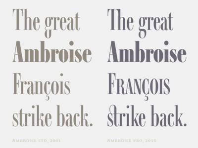 Ambroise Pro François