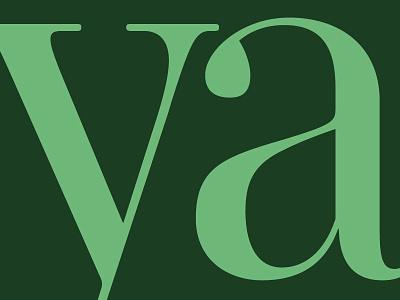 Mencken Pro Head Regular: y-a. baltimoresun ya didot typofonderie opticalsizes fonts typefaces typography forthcoming mencken
