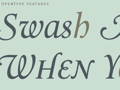 Swash me a River OpenType features tests