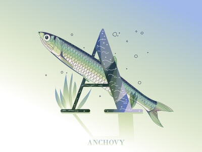 A is for anchovy