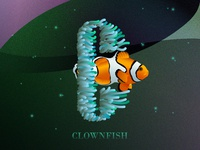 C is for Clownfish