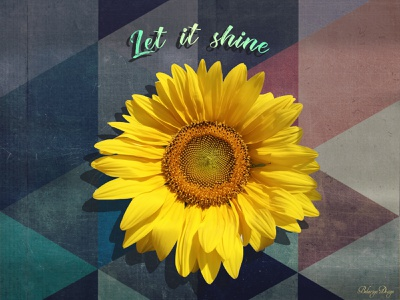 Let it shine let it shine graphic design sunflower mood colors designinspiration graphicdesign photoshop art photoshop