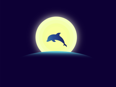Dolphin in the Moonlight