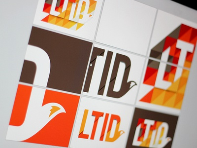 LTID logo branding fox tail depth colour typography identity orange brown process