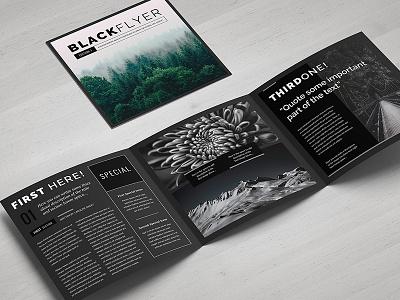 Blackflyer Illustrator Template photography porfolio black digital print leaflet illustrator template trifold square brochure