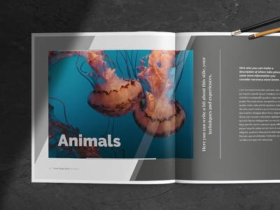 Multipurpose Porfolio Template magazine brochure architecture fashion template design editorial digital print photography indesign template indesign porfolio
