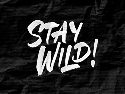 Stay Wild! brush lettering hand lettering outdoors sketch camping