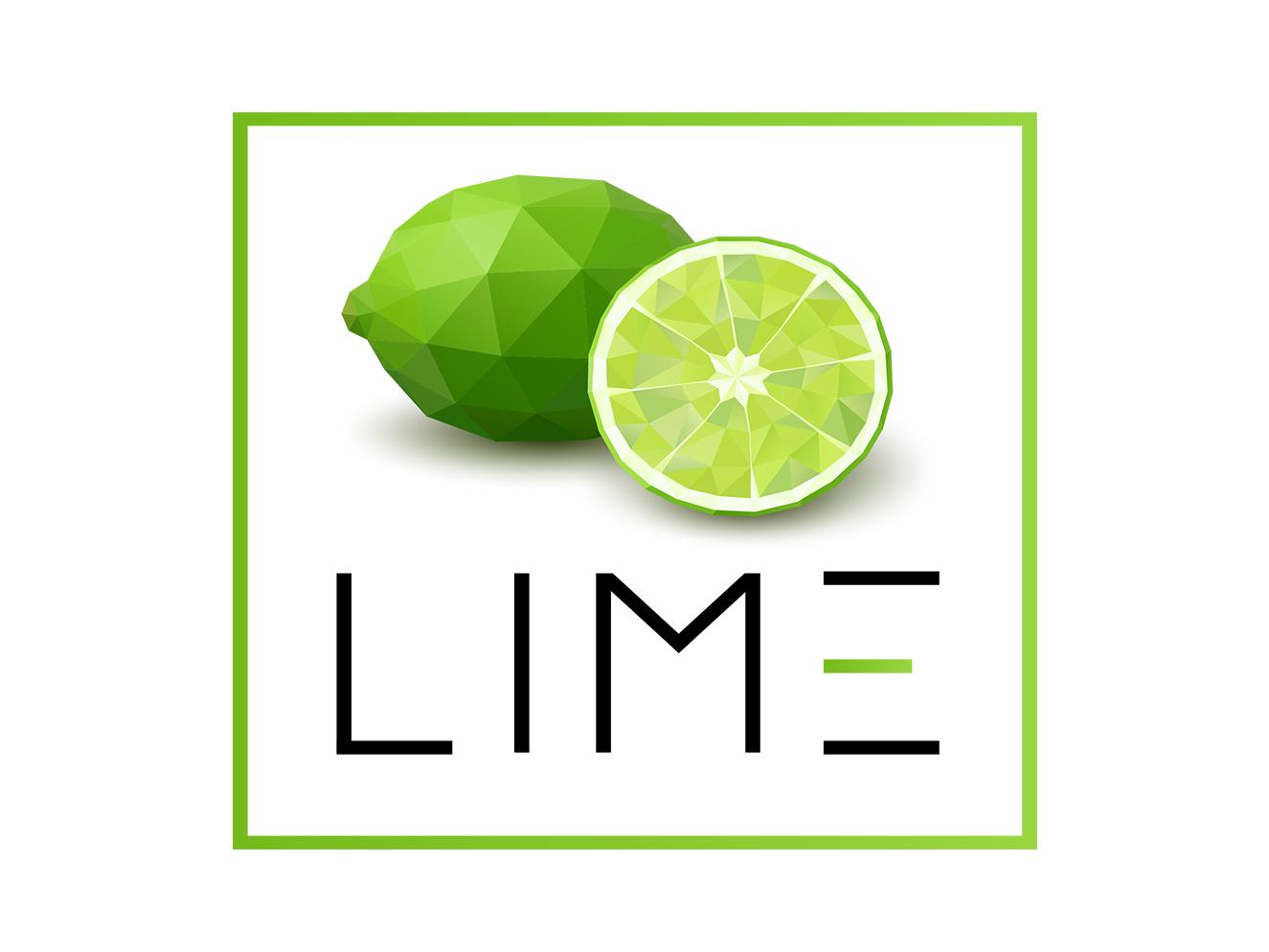 Lime logotype simple illustrator clean minimal flat branding vector lime logo design illustration