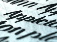 Brush Script Study - Appleton Coworking