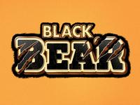 Videogames Black Bear Illustration