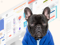 Petphabet - Redesign Case Study cat dog pets responsive web redesign landing case study
