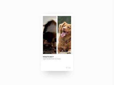 Tale animated layouts interaction app ux layout design startup interface mono ui minimal