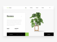 Natural Market Web Design (Concept)