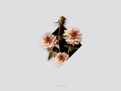 Flowers in Diamond Motion Design flowers in diamond sunuy studio flowers and typography vintage florals lettering animation motion graphics animation parallax florals and typography