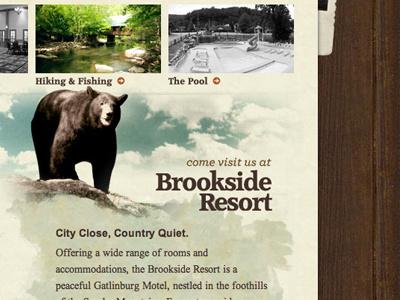 Brookside Resort paper texture wood bear grunge watercolor sky typography warm photos