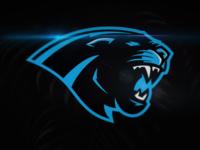Carolina Panthers Rebrand Concept