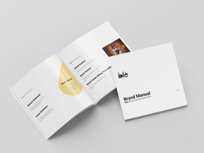 Brand Style Guide / Manual