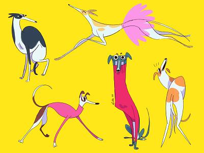 Greyhound character design procreate cachorro illustration dog ilustration doggy dog