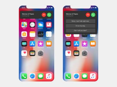 IOS 13 call concept