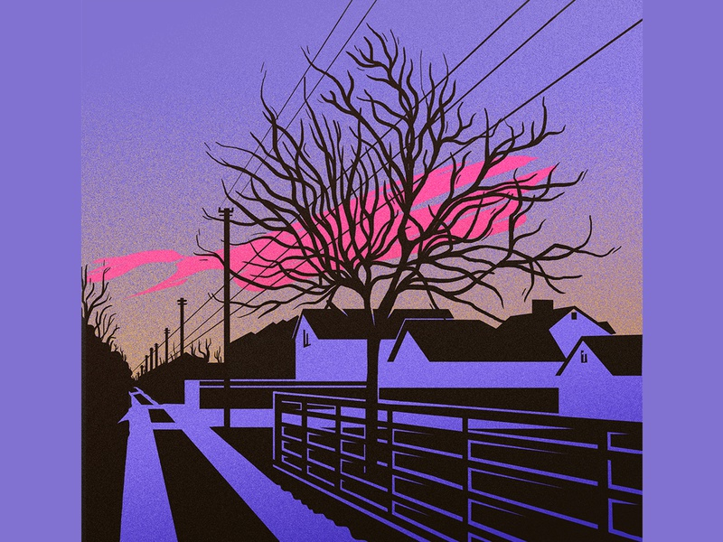 sunset tree houses street sunsent colors lines graphicdesign vector illustration
