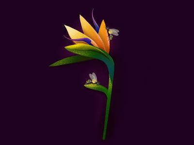 Seven days in Paradise Flower