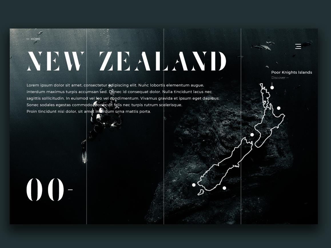 New Zealand Scuba Diving Spots 00 Ui Website By Erwan Le Roch On Dribbble