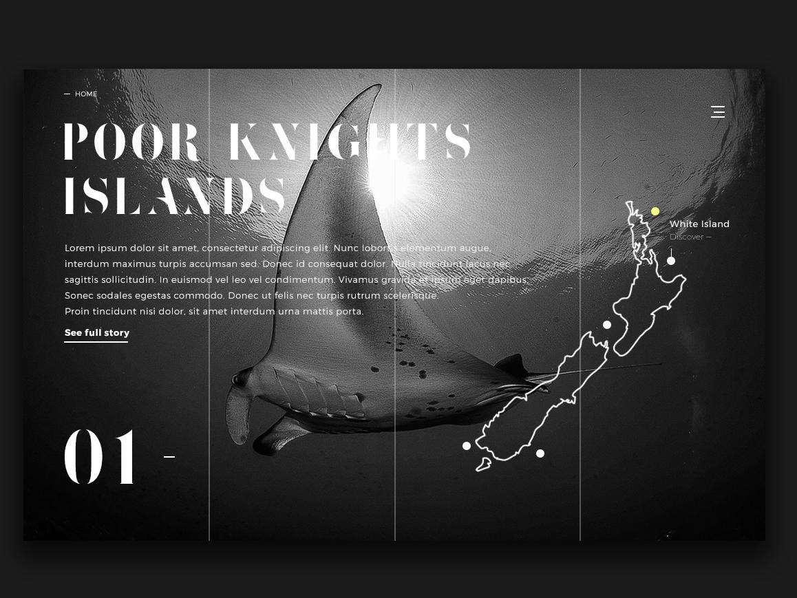 New Zealand Scuba Diving Spots 01 Ui Website By Erwan Le Roch On Dribbble