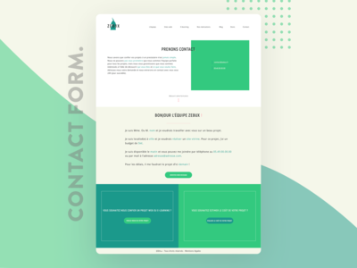Zebux Contact Form Concept - UI Website