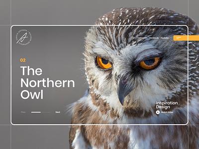 The Northern Owl concept inspiration design trend interaction interface uiux webdesign webpage owl animals website landing