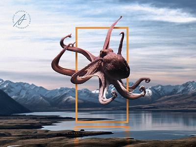 Octopus design photoshop art concept inspiration idea landscape creative animal illustration trend graphicdesign octopus photomanipulation poster animals