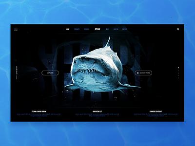 Theme Ocean diseño gráfico blue natural shark sea ocean webdesign web uiux ui