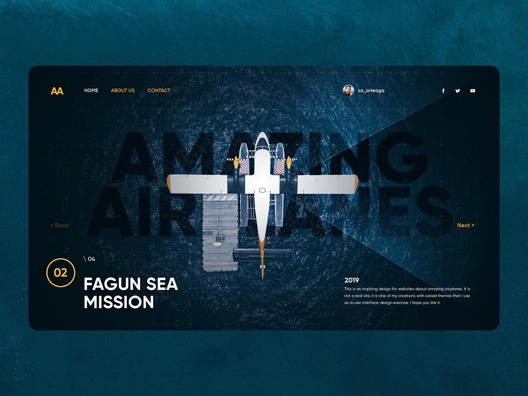 Amazing Airplanes pilots tech interface interaction webpage landing graphic design blue trend ui design uiux webdesign website concept inspiration sea airplane