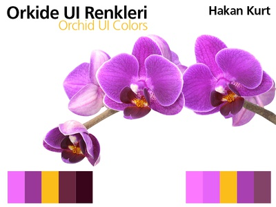 Orchid UI Colors orchid ui colors flower gui flat