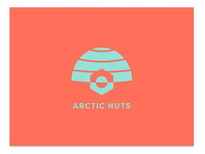 Arctic Nuts simple graphic design branding logo logo design
