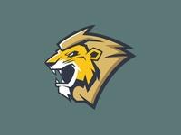Lion logo concept !