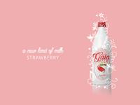 Gala Milk - Strawberry