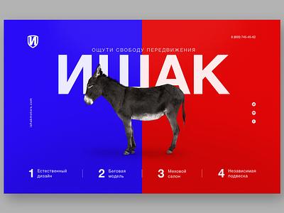 donkey concept inspiration afiche affiche website concept design color website poster typography web banner concept ui