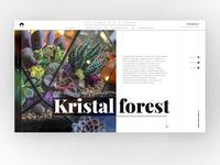 flowers online-shop, main page