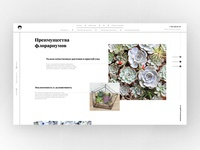 flowers online-shop, page