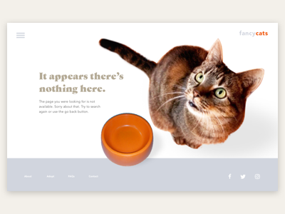 Daily UI #008: 404 page cat missing page 404 user interface ui dailyui001 daily ui dailyui