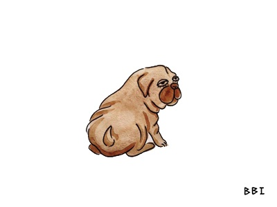 Doggo watercolor drawing blackboozeillustrations illustration puppy dog