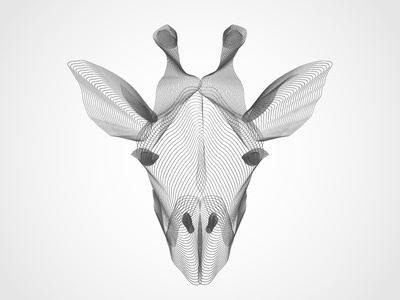 X-ray Giraffe