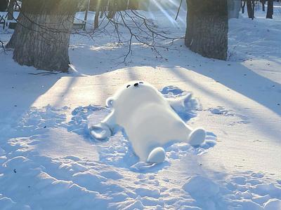 Snow angel graphic white bear bear angel realistic colors drawing wacom photoshop winter