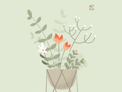 Home Plants pastelcolor flowers plants stayhome illustration flat