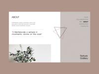 Nature Gallery grid design grid content interface motivation ux ui website minimal web type figma typography design