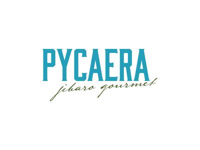 Pycaera Logo