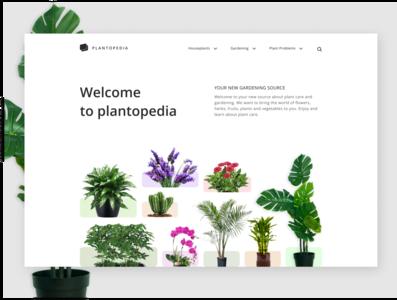 Plantopedia minimal website design product design webdesign web vector figmadesign ux ui minimal design