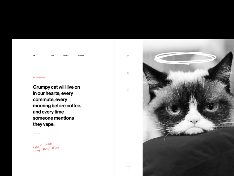 RIP Grumpy Cat scribble typography grayscale black and white layout grid web cat ux ui