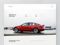 Tesla Model 3 Page