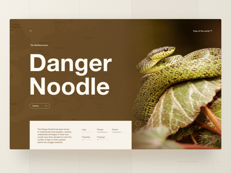 The Mediterranean Danger Noodle web design snake animal wildlife beige brown tones earth hero section hero ux design ux ui design ui